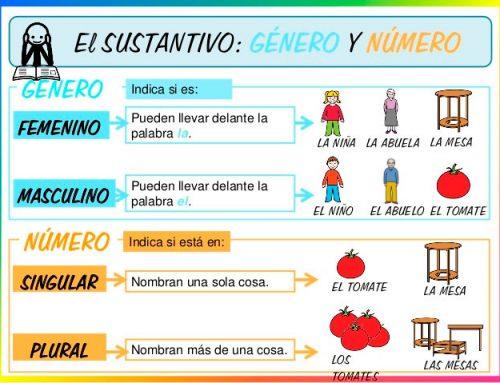 Género y número en español