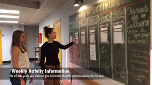 Información Actividades Escuela